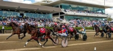 Harness Racing Tips: Albion Park & Menangle - Saturday February 23rd