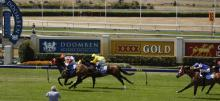 Horse Racing Betting Tips July 14th