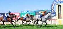Australian Horse Racing Tips Monday October 12th