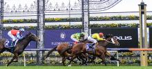 Flemington Racing Tips 2020 Stakes Day