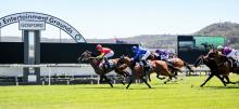 Australian Horse Racing Tips Thursday October 8th