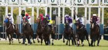 Horse Racing Betting Tips July 7th