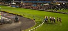 Moonee Valley Racing Tips