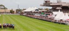 Horse Racing Tips: Saturday, May 1st