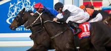 Australian Horse Racing Tips Friday September 25th