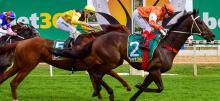 Australian Horse Racing Tips Tuesday September 29th