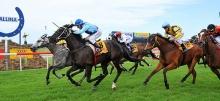 Australian Horse Racing Tips Thursday September 10th