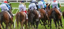 Horse Racing Tips: Saturday February 6th