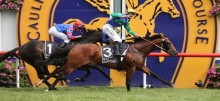 Caulfield Racing: Ladbrokes Odds Boost Stakes Preview & Betting Tips