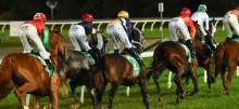 Australian Horse Racing Tips Friday October 9th