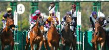 Horse Racing Tips New Year's Day 2021