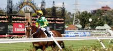 Horse Racing Saturday Betting Tips