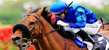 Saturday Horse Racing: 2015 Villiers Stakes Preview & Betting Tips