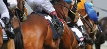 Australian Horse Racing Tips Wednesday February 3rd