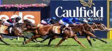 Caulfield Blue Diamond Betting Tips