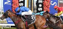 Horse Racing Tips: Saturday January 16th