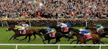2014 Melbourne Cup Preview, Tips and Promos!