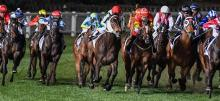 Moonee Valley Racing Tips Friday September 25th