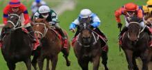 Horse Racing Tips Saturday