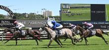 Australian Horse Racing Tips Saturday February 13th
