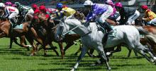 Australian Horse Racing Tips Saturday December 5th