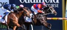 Saturday Horse Racing July 10th
