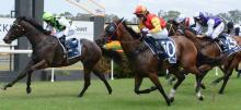 Australian Horse Racing Tips Tuesday September 15th