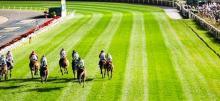 Friday Night Horse Racing Tips